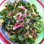 Jicima Kale Salad with Cranberry Ginger Vinaigrette