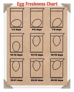 Egg Freshness Chart 2